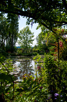 Giverny - 21 juillet 2013 16h05